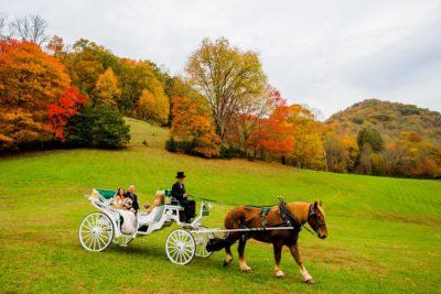 Rustic Wedding, North Carolina